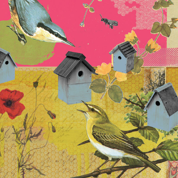illustration of birds and bird houses