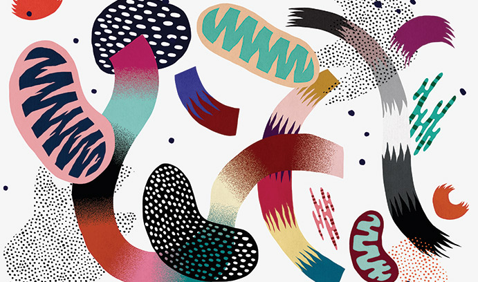 Illustration of bacteria