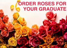 Order roses for your graduate