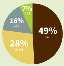 Pie chart showing the faculty breakdown by college