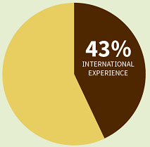 Pie chart depicting percentage of graduating class who had an international experience