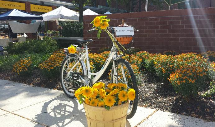 Bike-sharing bicycle