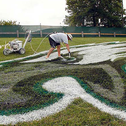 Philadelphia Eagles logo on Goodman campus football field