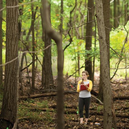 Lehigh's arboretum