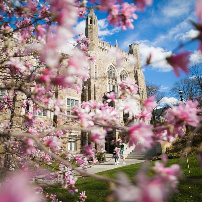Lehigh University-Spring Campus Beauty