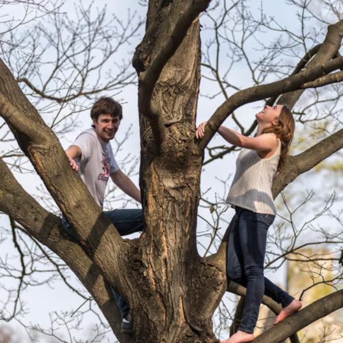 Lehigh's trees