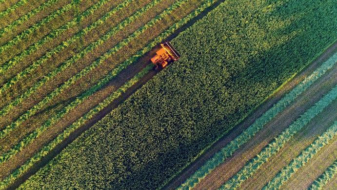 Aerial crop rows