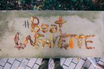 Beat Lafayette spelled in fall leaves at Lehigh University