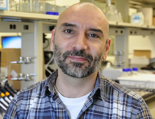 Javier Buceta, an associate professor of chemical and biomolecular engineering