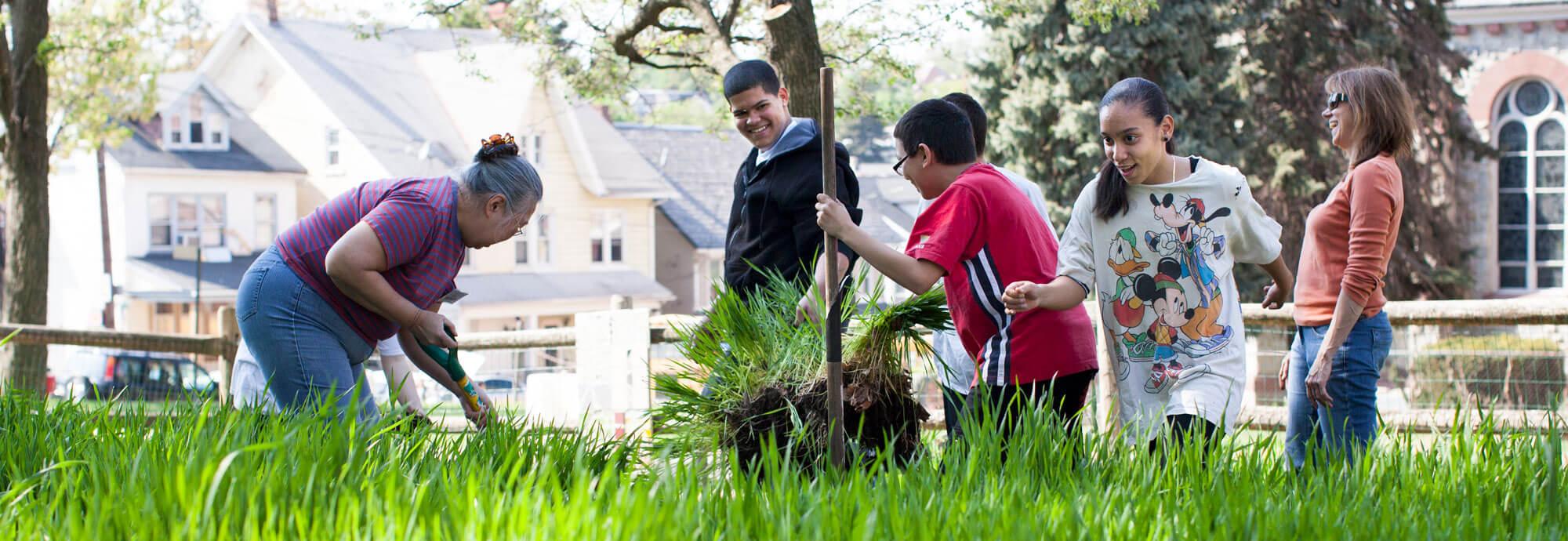 Neighborhood helpers planting new sod